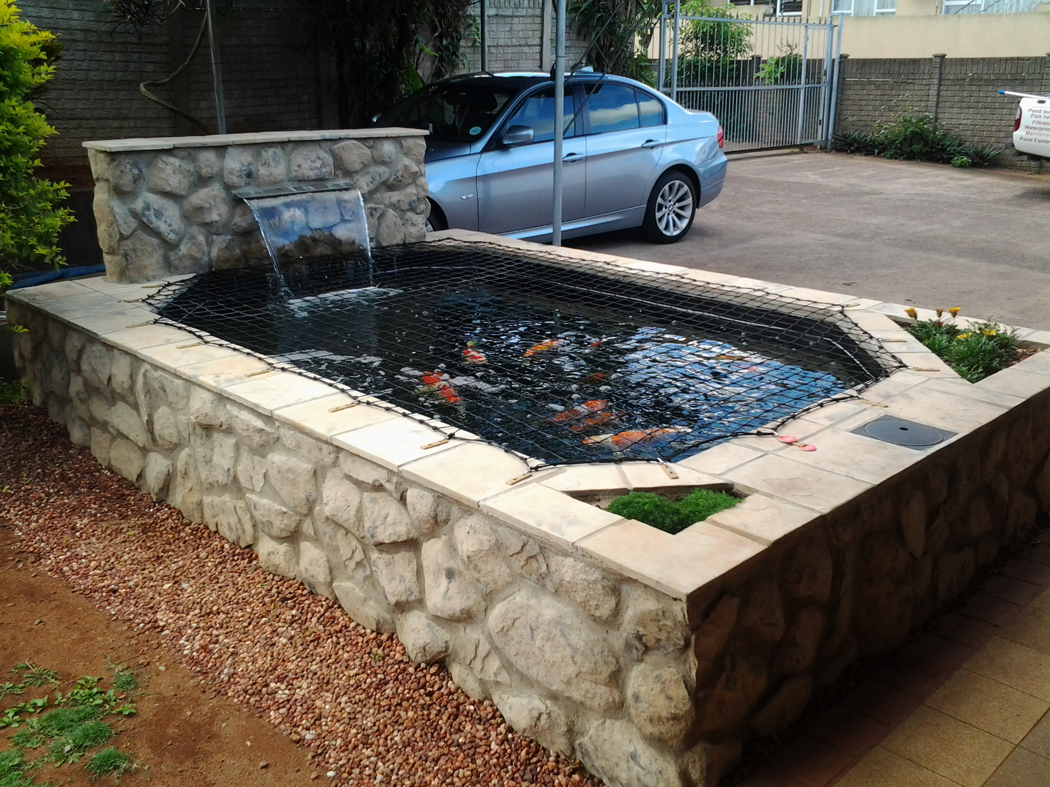 Koi pond for Koi pond size